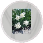 Spring Time Trumpets  Round Beach Towel