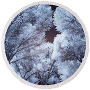 Spring Trees And Shadows Round Beach Towel