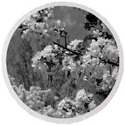 Spring Trees - B And W Round Beach Towel