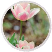 Spring Tulips 160 Round Beach Towel