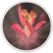 Spring Tulips - Photopower 3105 Round Beach Towel