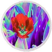 Spring Tulips - Photopower 3146 Round Beach Towel