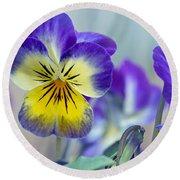 Spring Violas Round Beach Towel