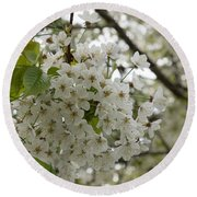 Springtime Abundance - Masses Of White Blossoms Round Beach Towel
