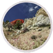 Springtime At Red Rock Canyon Round Beach Towel