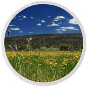 Springtime In Hat Creek Round Beach Towel