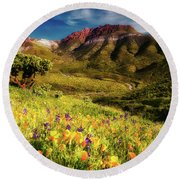Springtime In The Desert Southwest Round Beach Towel