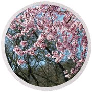 Springtime Seasonal Pink Blossom Flowers Baslee Round Beach Towel