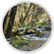 Springtime Stream In The Smokies Round Beach Towel