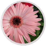 Square Framed Pink Daisy Round Beach Towel