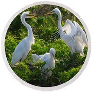 Squawk Of The Great Egret Round Beach Towel