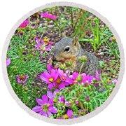 Squirrel Among Coreopsis In Huntington Gardens In San Marino-california   Round Beach Towel