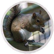 Squirrel II Round Beach Towel