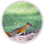 Squirrel In The Park Round Beach Towel