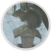 Squirrel On Bird Feeder Round Beach Towel