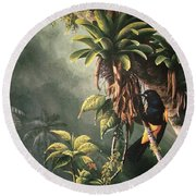 St. Lucia Oriole In Bromeliads Round Beach Towel
