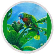St. Lucia Parrot And Bwa Pain Marron Round Beach Towel