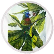 St. Lucia Parrot And Fruit Round Beach Towel