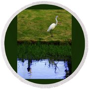 St Thomas Great Egret At The Lake Round Beach Towel