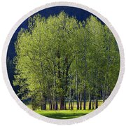 Stand Of Trees Yosemite Valley Round Beach Towel