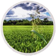 Standing Above The Crop Round Beach Towel
