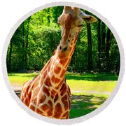 Standing Above The Rest Round Beach Towel