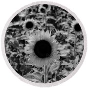 Standing Tall  Round Beach Towel