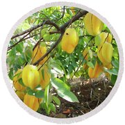 Star Fruit Belongs To The Plant Family Round Beach Towel