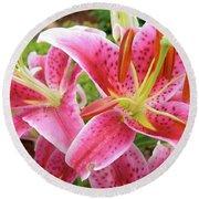 Stargazer Lilies At Their Best Round Beach Towel
