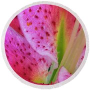 Stargazer Lily Close Up Round Beach Towel