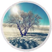 Stark Shadows Round Beach Towel