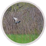 Starling Take-off Round Beach Towel