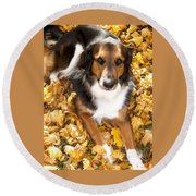 Stay Gold Round Beach Towel