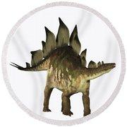 Stegosaurus Profile Round Beach Towel