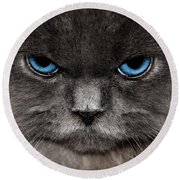 Stern Kitty Round Beach Towel
