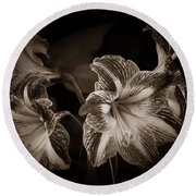 Still. Life. Colorless. Flowers. Round Beach Towel