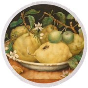 Still Life With Bowl Of Citrons Round Beach Towel