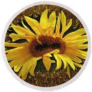 Still Life With Sunflower Round Beach Towel