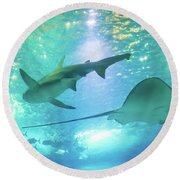Sting Ray And Shark Round Beach Towel