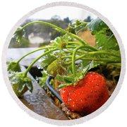 Strawberries And Rain Round Beach Towel