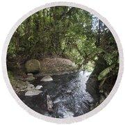 Stream In  Rainforest Round Beach Towel