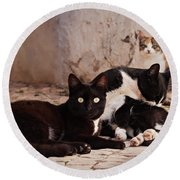 Street Cats - Portugal Round Beach Towel