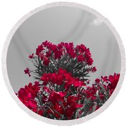 Striking Red  Round Beach Towel