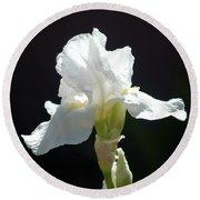 Striking White Iris Round Beach Towel