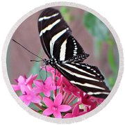 Striped Beauty - Butterfly Round Beach Towel