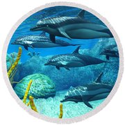Striped Dolphins Round Beach Towel