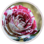 Striped Rose  Round Beach Towel