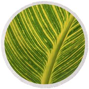 Stripey Leaf Round Beach Towel