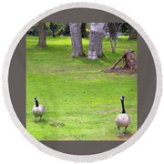 Strolling Canadian Geese Round Beach Towel