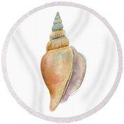 Strombus Vittatus Shell Round Beach Towel